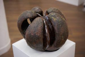 Fruchtkapsel